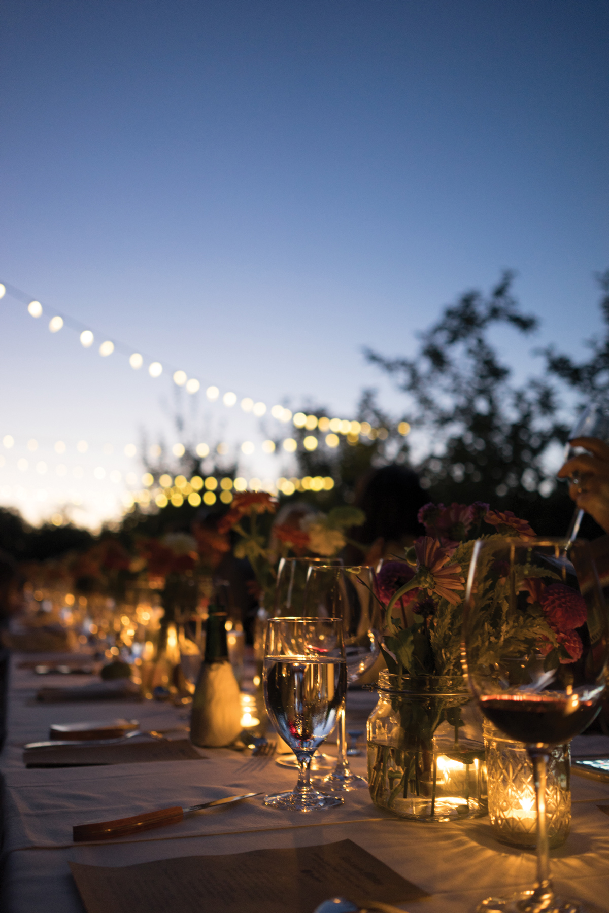 Heirloom Kitchen / Farm Dinner 2015 / Hauser Hill Farms